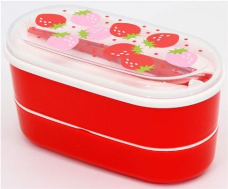 New-Bento-Boxes-from-Japan-arrived-1